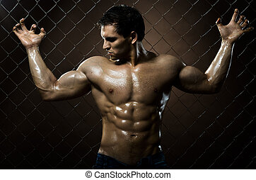 sexy guy - the very muscular handsome sexy guy on dark brown...