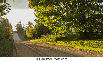 the view down a scenic country roadway in autumn landscape