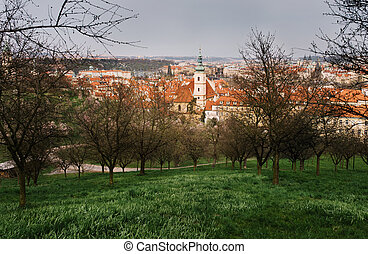 The View on the Prague's old town