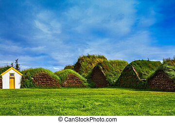 The village - Pioneer Museum - Viking - The village first...