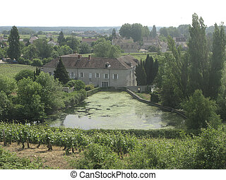 The vineyards of Clos de Vougeot, Burgundy, France