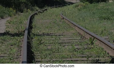 The vintage old railway with rusted the rails overgrown with...