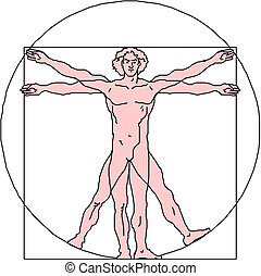 The Vitruvian man. Detailed drawing on the basis of artwork...