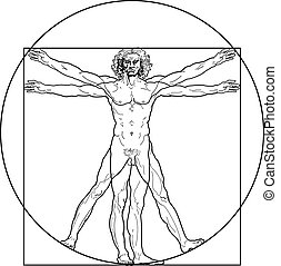 The Vitruvian man (Outline version) - 'Homo vitruviano'. So-...
