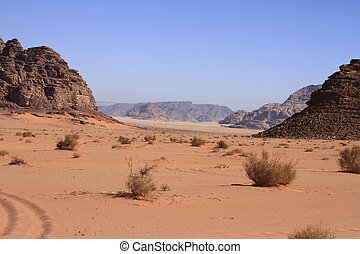 The Wadi Rum is the largest wadi in Jordan.