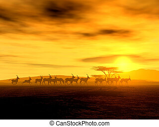 The Walking Tour of African Antelopes