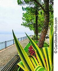 The walkway on the shore, Lake Garda,Italy, Europe