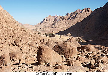 The walls in Mount Sinai