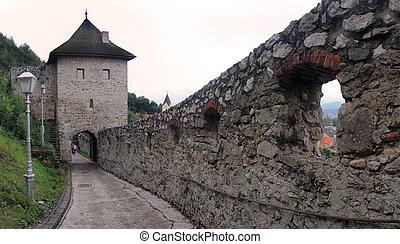 the walls of Trencin Castle (slovak: Trenciansky hrad),