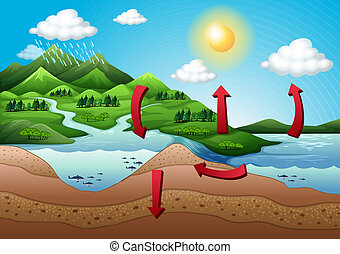The water cycle - Illustration of the water cycle