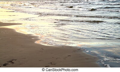 The waves of the Baltic Sea are rolled on a sandy beach.