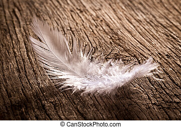 feather on old wooden desk