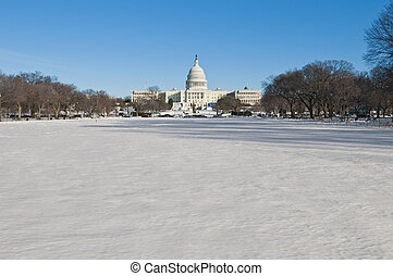 The White House building at The Mall in DC, USA