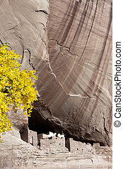 The White House Canyon de Chelly