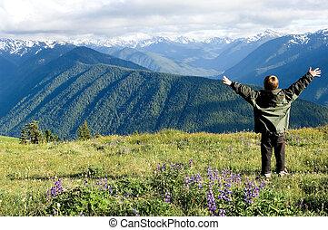 The whole world! - Hurricane ridge, Olympic national park,...