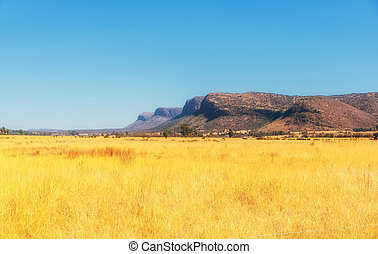 The wide open farmland and distant mountains in South Africa.