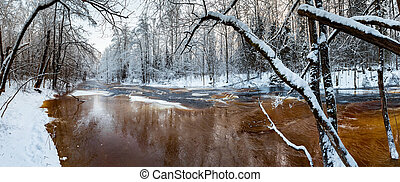 The wild frozen small river in the winter wood, the wild nature at sunset, the river of red color, ice, snow-covered trees