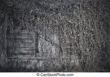 the window of an old house in a ret