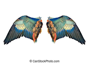 The wings of an angel ready for your design work