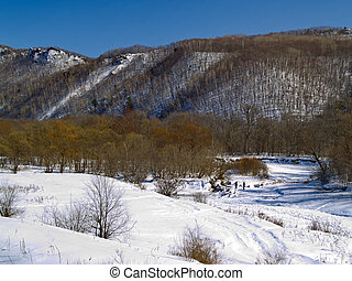 The Winter landscape - wood, mountains