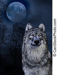 The Wolf and the moon in the midnigt