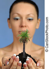 The woman holds in hands soil with a palm tree
