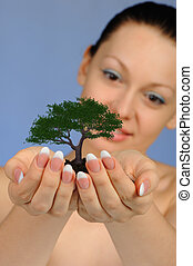 The woman holds in hands soil with a tree