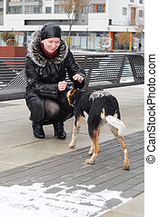 The woman in a sheepskin coat irons a stray dog in the winter