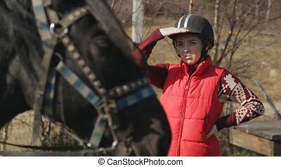 The woman jockey is looking into horse standing next to the domestic hoofed animal with harness.