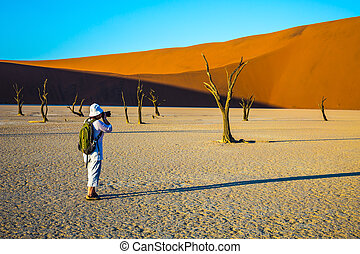 The woman - tourist photographing dried tree