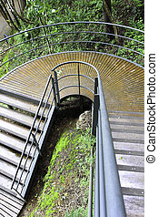 The wood stairway in park
