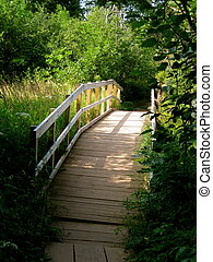 A wooden bridge in the Gooseberry State Park in Duluth, MN taken during late summer.