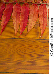 The wooden surface with autumn leav