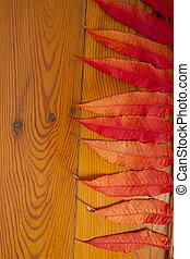The wooden surface with autumn leaves