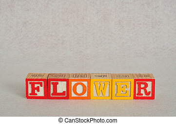 The word flower spelled with colorful alphabet blocks isolated on a white background