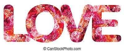 The Word LOVE Spelled With Isolated Pink Roses on White Background
