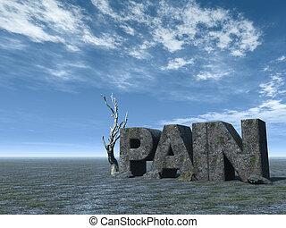 the word pain in stone at desert landscape - 3d illustration