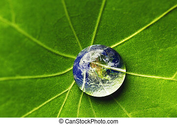 The world in a drop of water on a leaf. Elements of this...
