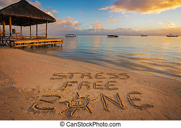 "The written ""Stress free zone"" - Forground written in the..."