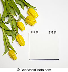 the Yellow tulips with notebook on a white background