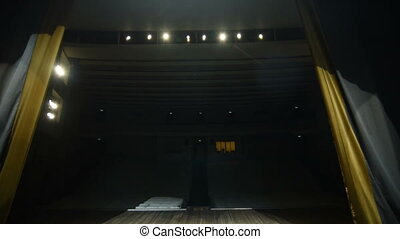 Theatrical Curtain Opening. Large theatre from stage lights.