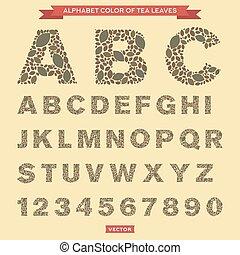 theeblaadjes, in, de, vorm, van, brieven, en, getallen, vector