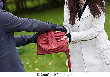Theft in park - A thief trying to steal a bag from a woman...