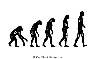 Theory evolution of man. From monkey to man. Vintage...