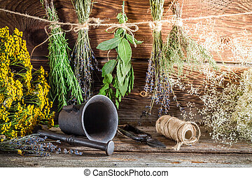 Therapeutic herbs for tincture as alternative medicine