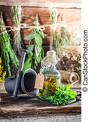 Therapeutic herbs in bottles as natural medicine