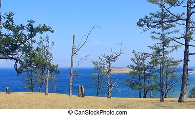 There is beautiful landscape of lake coast line.