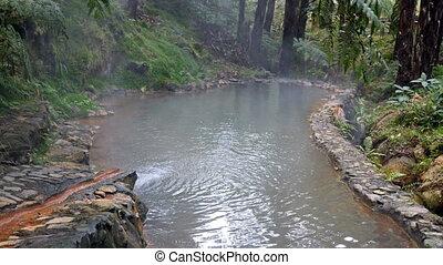 Thermal pool Caldeira Velha, Sao Miguel island on Azores,...