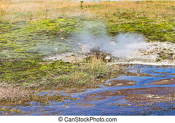 thermal spring in Haukadalur geyser valley - travel to...