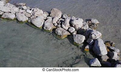 Thermal waters in the Lago di Vener - View of thermal waters...